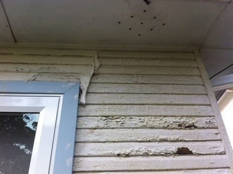 Damaged weatherboards and how to tell if your North Shore home has rising damp tips from Summit Coatings